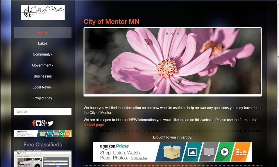 Mentor MN demo web site
